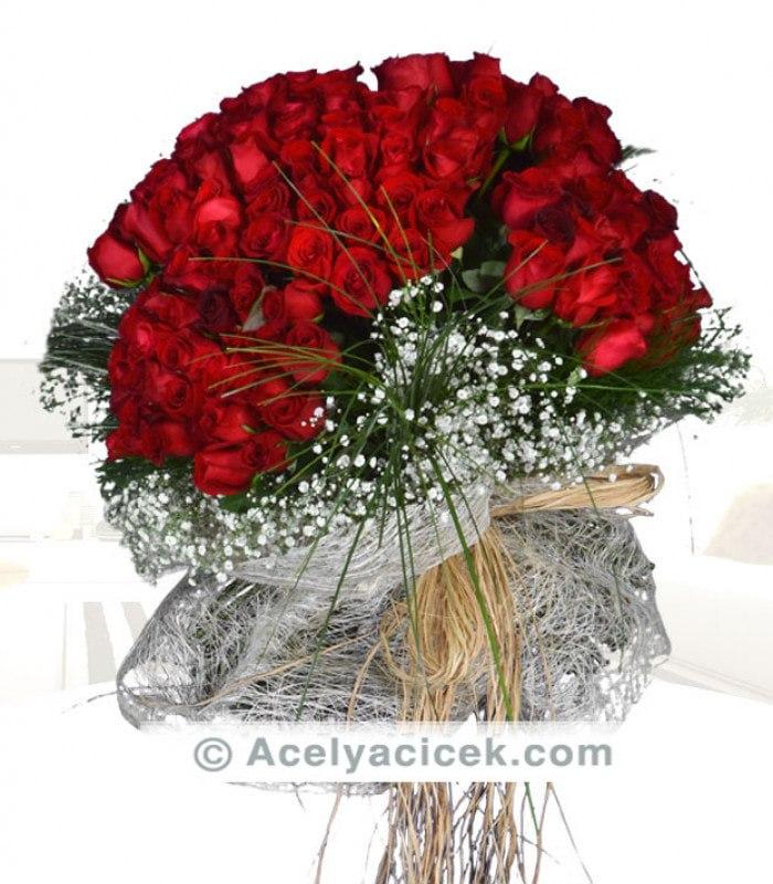 Güllerin Aşkı