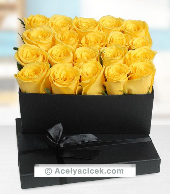 Sarı Güllerin Dünyası