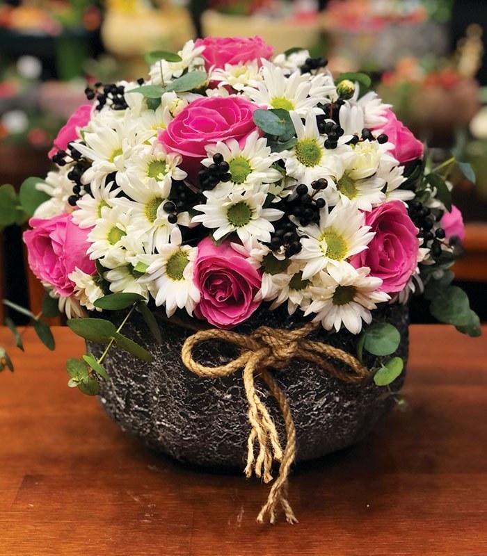 Kırçiçeği Pembe Gül Dostluğu