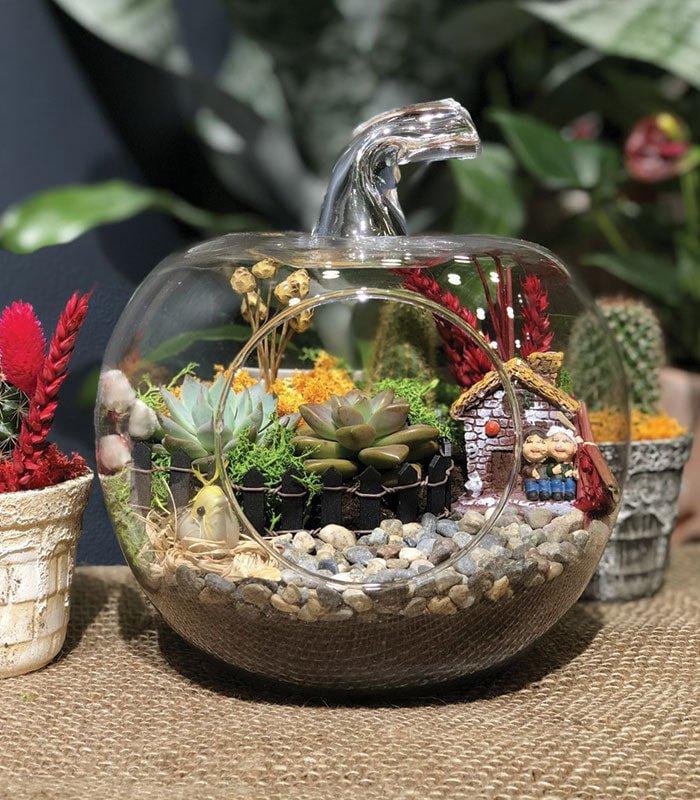 Hobi Bahçe 5