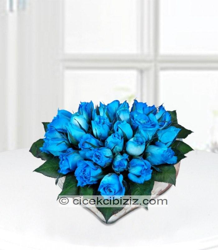 Kalp İçinde Mavi Gül
