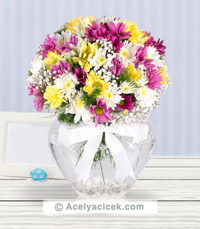 Gülümseyen Çiçek